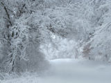 Winter wonderland at Trempealeau National Wildlife Refuge