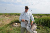 Biologist Robbie Callahan holds a Brown Pelicanfor tagging
