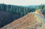 Spotted Owl Habitat Clear-cutting