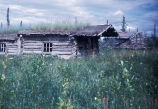 Trapper Cabin Along the Banks of  the Coleen River