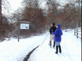 Wertheim National Wildlife Refuge cross country ski