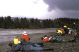 Homer, Shorebird Environmental Education in Kachemak Bay, Alaska