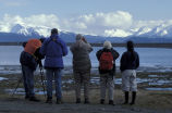 Kachemak Bay Shorebird Festival viewing station