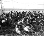 Historical Waterfowl Survey