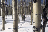 WO 2503 Snowshoeing in Colorado