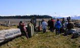 Kachemak Bay Shorebird Festival Birdwalk in Beluga Slough