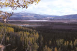Scenic View of Tetlin National Wildlife Refuge