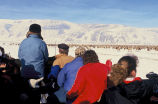 Winter Elk viewing from the sleigh ride