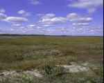 Parker River National Wildlife Refuge