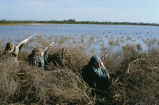 Waterfowl hunt