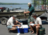 Northern Snakehead Fish Survey