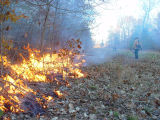 Joint Fire Science Program prescribed burn