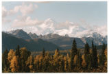 Fall View of Mt. McKinley, Denali
