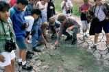 Environmental Education at San Luis National Wildlife Refuge