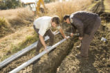 U.S. Fish and Wildlife Service employees laying pipe