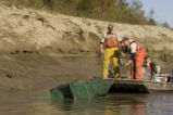 U.S. Fish and Wildlife Service employees seining in Big Muddy