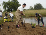 People restoring pond during WOW Workshop at National Conservation Training Center