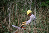 National Wildlife Refuge maintenance