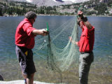 Biologists setting gill net for collecting fish samples