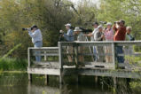 Birdwatchers find subject to view.