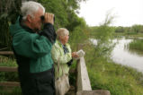 Birdwatching on an observation deck
