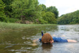 Snorkeler surveys the Potomac River bottom