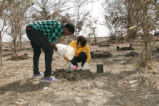 Refuge volunteers assist with reforestation