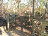 Damage to Ridge Trail after hurricane Katrina.